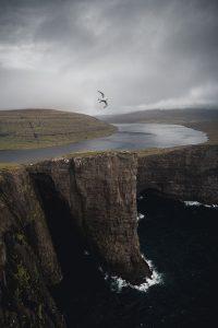 adventure-faroeislands-bird-mountain-ocean
