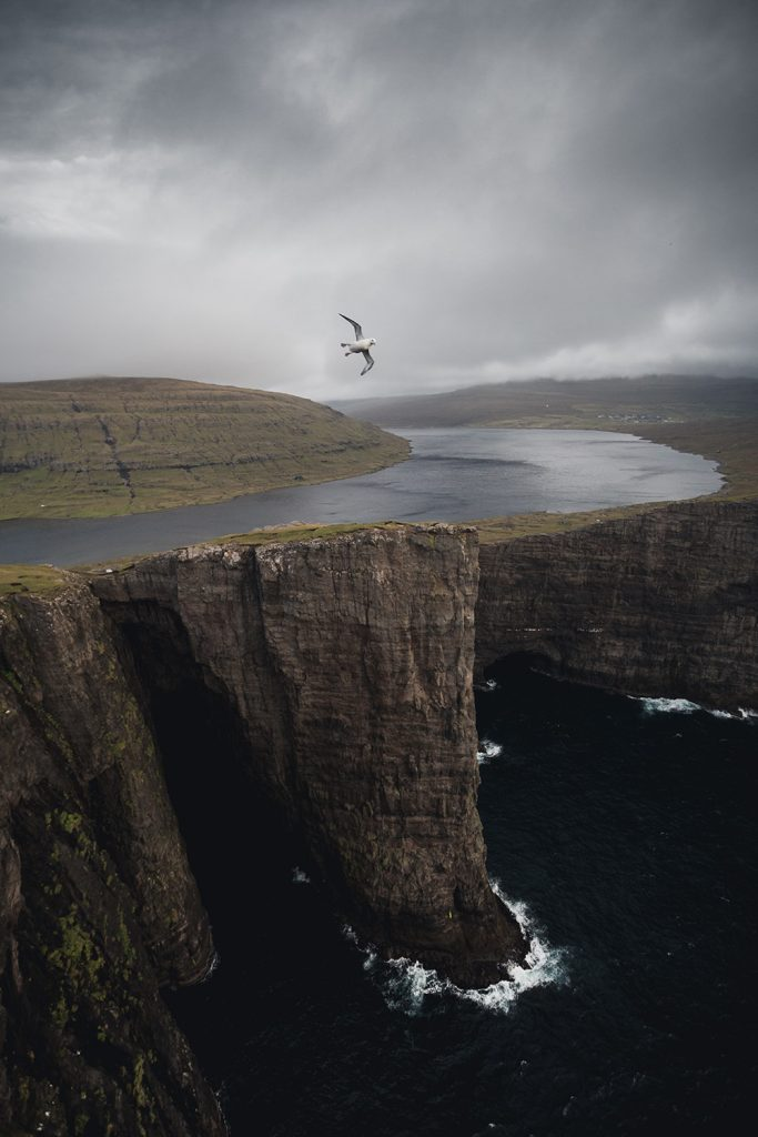 adventure-faroeislands-bird-mountain-ocean